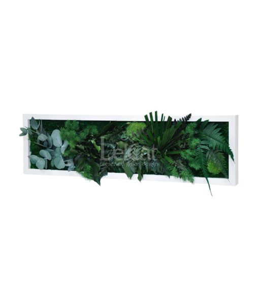 panoramico, preserved jungle frame, preserved plant picture, stabilized plants, green verticals