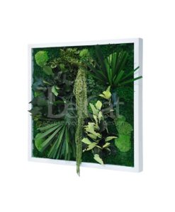 papyrus, preserved jungle frame, preserved plant picture, stabilized plants, green verticals