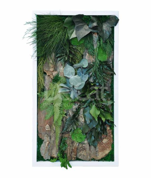 woody, preserved jungle frame, preserved plant picture, stabilized plants, green verticals