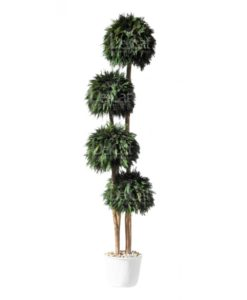 Thuja tree, preserved thuja ball, preserved topiary, stabilized plants, green verticals