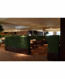 tenuifolium hedge, preserved hedge, preserved plant wall, stabilized plants, green verticals