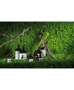 polemoss wall, preserved reindeer moss wall, preserved plant wall, stabilized plants, green verticals
