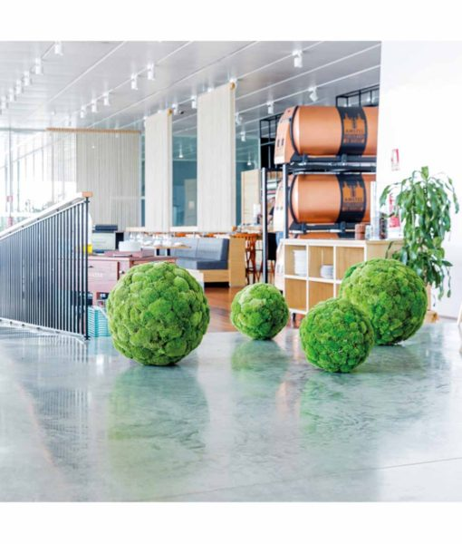 Polemoss, preserved deco sphere, polemoss ball, stabilized plants, preserved foliage