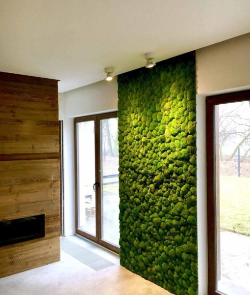 polemoss wall, preserved pole moss wall, preserved plant wall, stabilized plants, green verticals