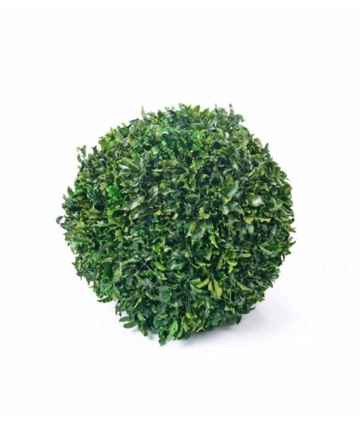 Tenuifolium, preserved deco sphere, tenuifolium ball, stabilized plants, preserved foliage