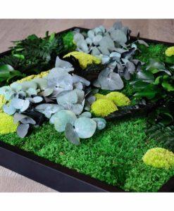 kontor 202, belcat design, cinerea frame, preserved moss, preserved plants