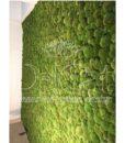 pole_moss_wall01_web