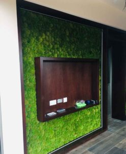 green verticals , moss tiles, moss wall, moss wall art preserved moss