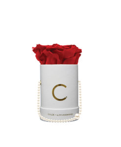 Chloe Flowerbox, Infinity Roses, Classic Red, Preserved Flowers, Cyprus, Florist, Concept Store, KONTOR 202