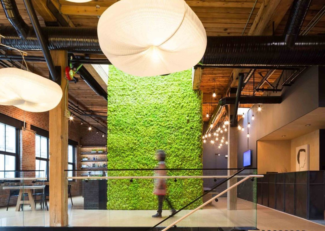 Kontor202 | Atelier & Lifestyle Lounge, there is no end to natural creativity - Preserved Moss Wall Office Plants