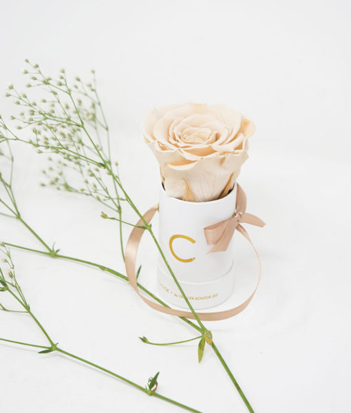 Chloe Flowerbox, Infinity Rose, Preserved Flowers, Wedding Flowers, Wedding Edition, Bombonieres