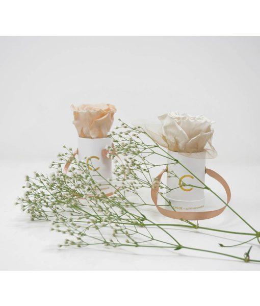 Chloe Flowerbox, Infinity Rose, Preserved Flowers, Wedding Flowers, Wedding Edition, Bombonieres