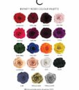 chloe_flowerbox_Infinity_rose_colours