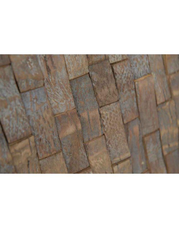 Coconut Tree Bark 61