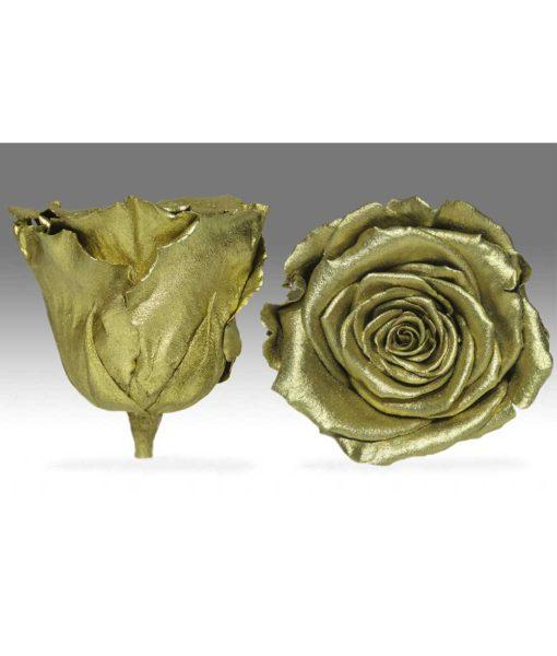chloe flowerbox, infinity roses, rose amor, preserved flowers, preserved roses