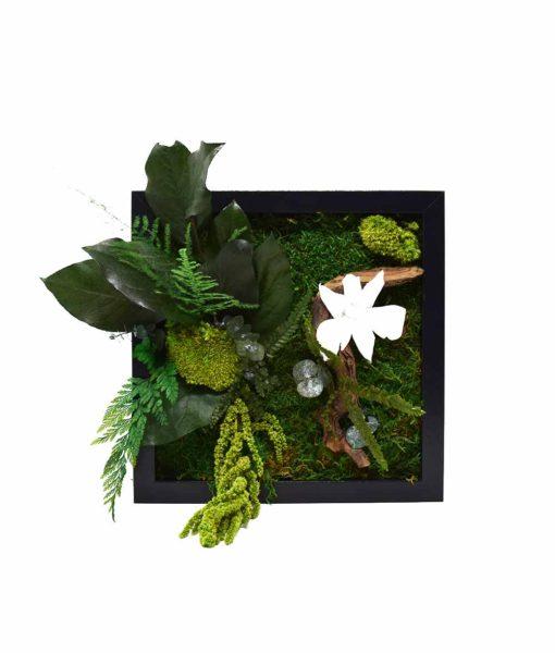 moss wall art, preserved moss, vegetal frame, moss frame, chloe design