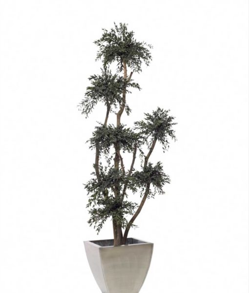 Eucalyptus Parvifolia topiary, 7 sphere topiary tree, preserved tree, stabilized plants, green verticals