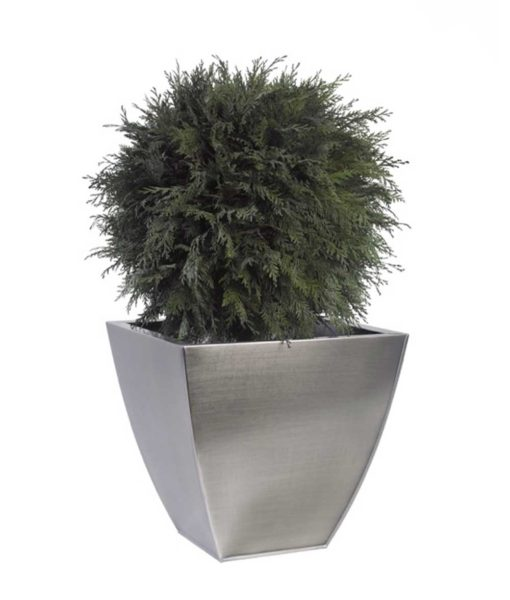 thuja occidentalis topiary, simple topiary tree, preserved tree, stabilized plants, green verticals