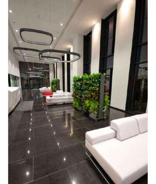 living green wall, living green dividers, vertical garden, garden on the wall