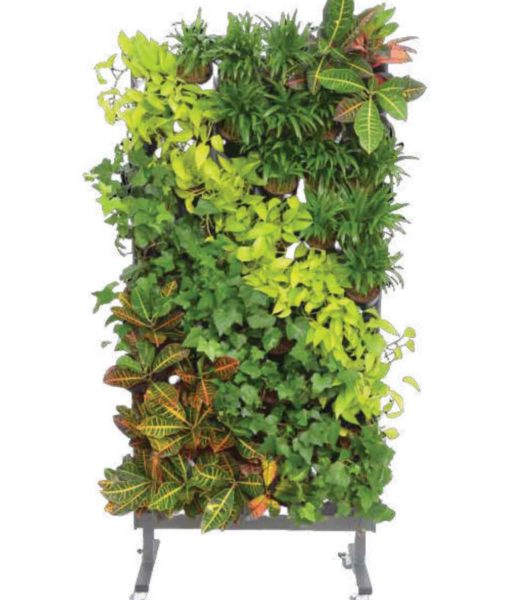 living green wall, living green dividers, vertical garden, garden on the wall