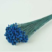 Botao Blue