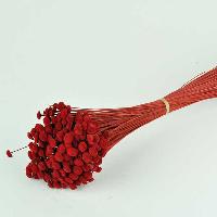Botao Red